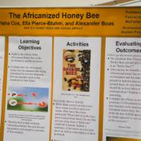 A student project poster on display about honey bees.